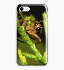 Firefly (1) iPhone Case/Skin
