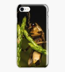 Firefly (2) iPhone Case/Skin