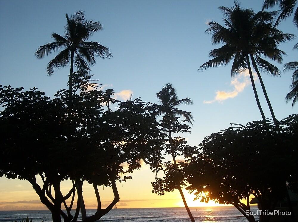 Aloha, Hawaiian Sunset by SoulTribePhoto
