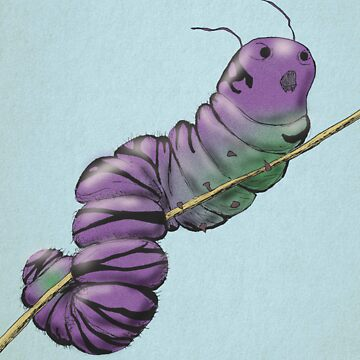 Caterpillar by MarcLawrence