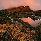 Cradle Highlands by Robert Mullner