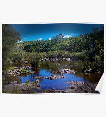 Dangars Falls, NSW Poster