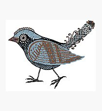 """Wacky Bird""  Blues Brown Blk Photographic Print"