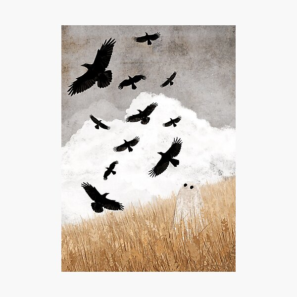Walter and The Crows Photographic Print