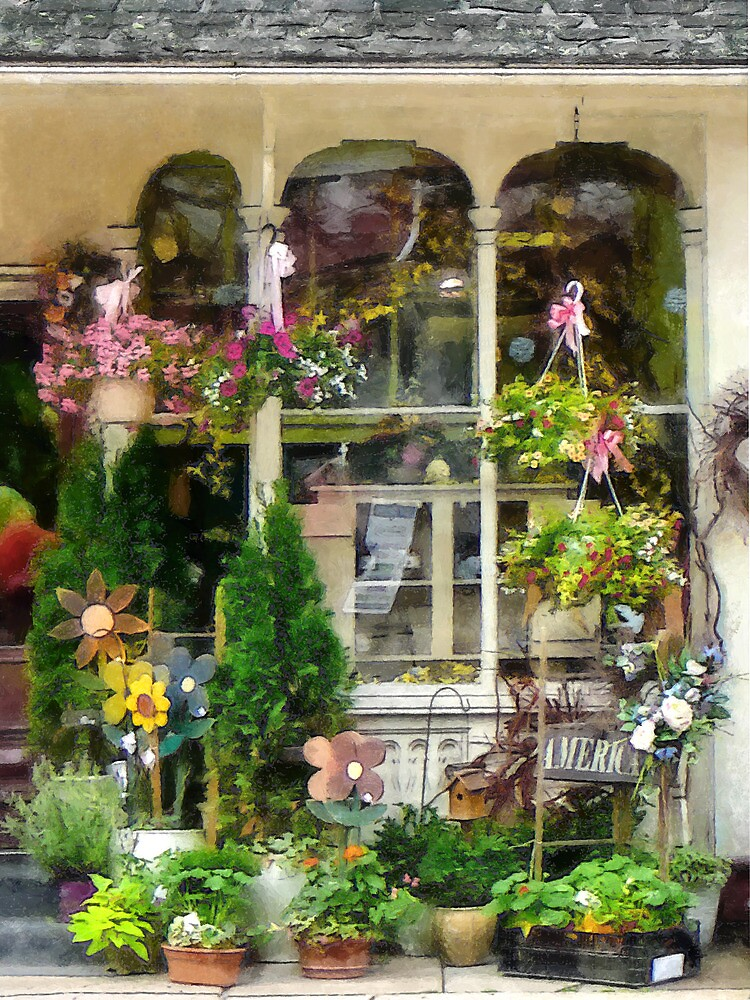 Strasburg Flower Shop by Susan Savad