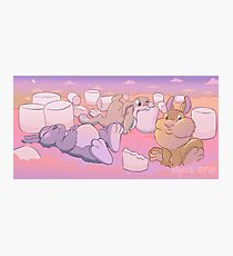 Chubby Bunnies Photographic Print