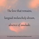 the love that remains by msdebbie