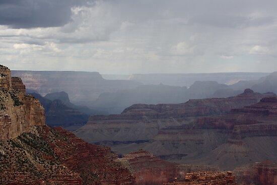 Desert Rain by Hayley Bohn