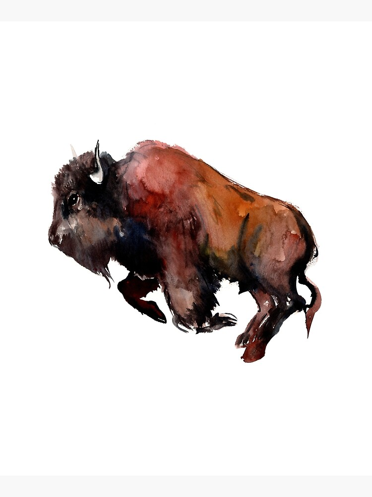 Bison by surenart