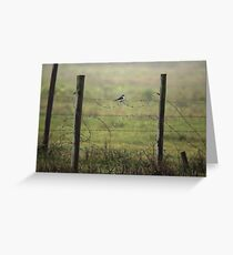 Shrike On Barbed Wire Greeting Card