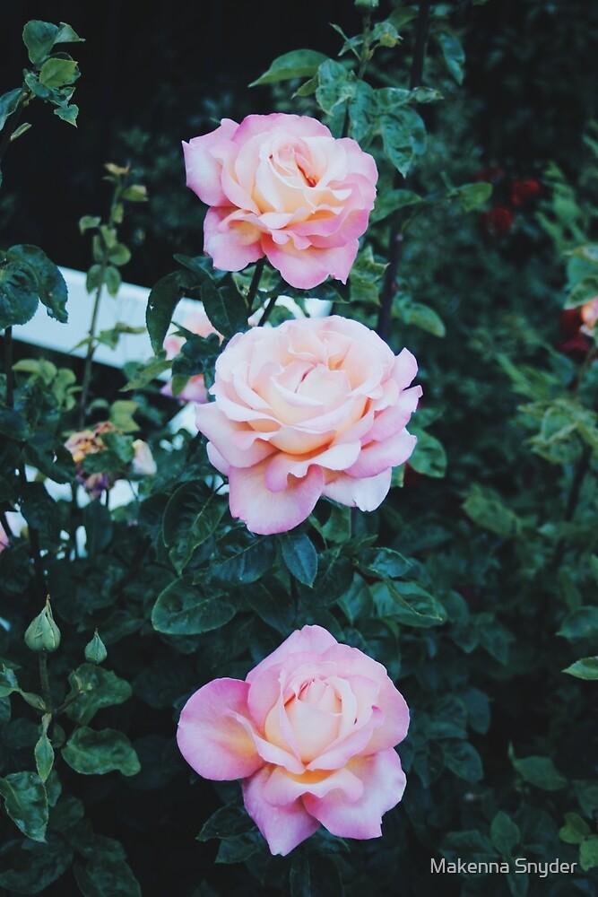 Flora 04 by Makenna Snyder