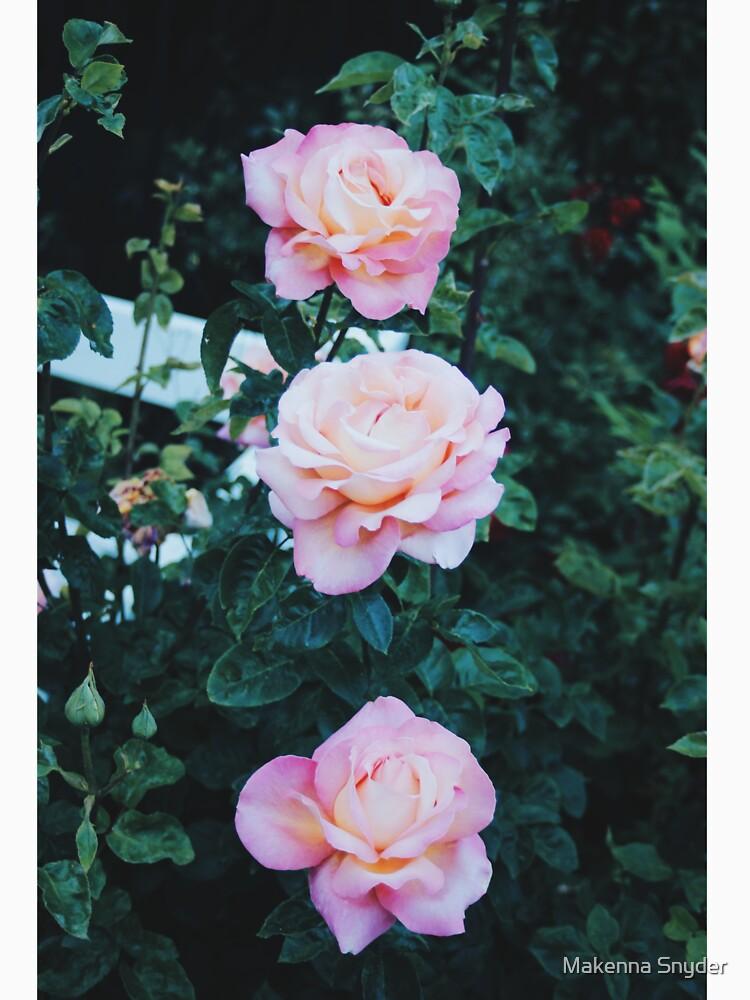 Flora 04 by Bythemoon