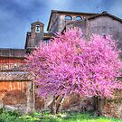 Spring at the Palantine by vivsworld