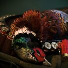 Prize Pheasant by Paul Holman