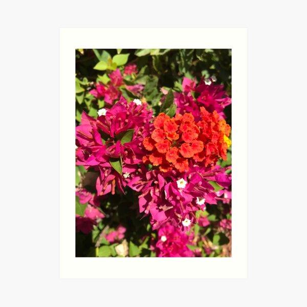 Love Inspired Spring Flowers Art Print