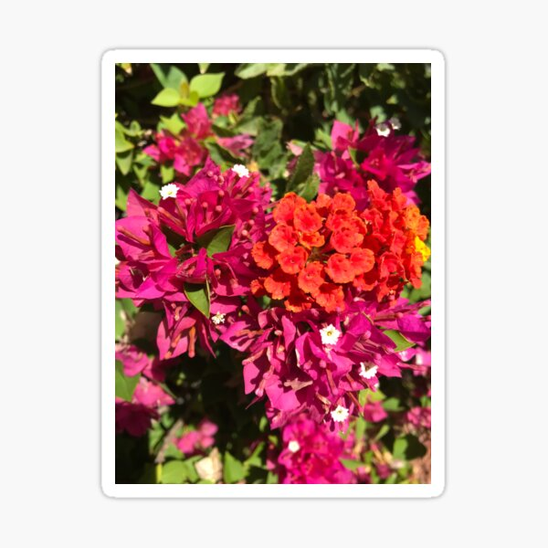 Love Inspired Spring Flowers Sticker
