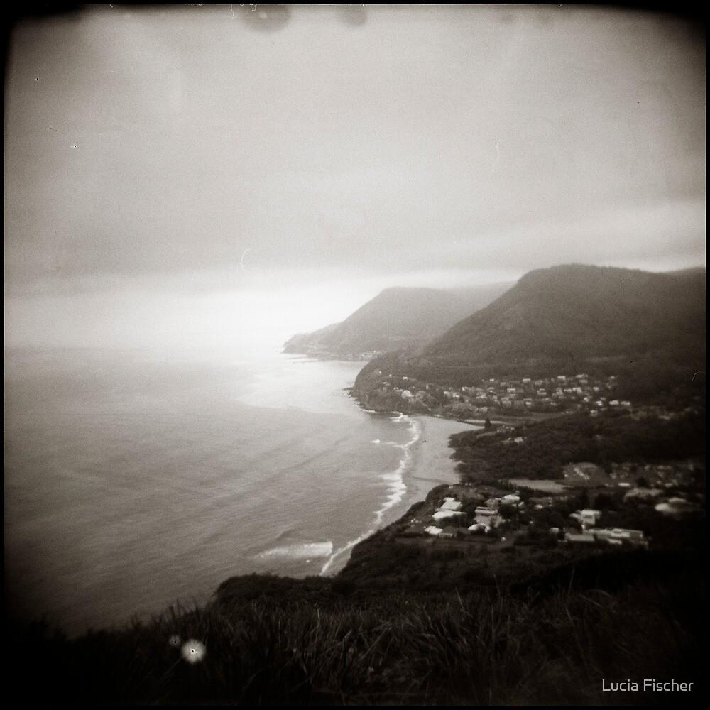 { vague skies } by Lucia Fischer