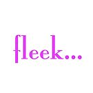 Fleek by PAGraphics