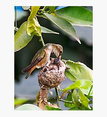 Sword Swallower Photographic Print