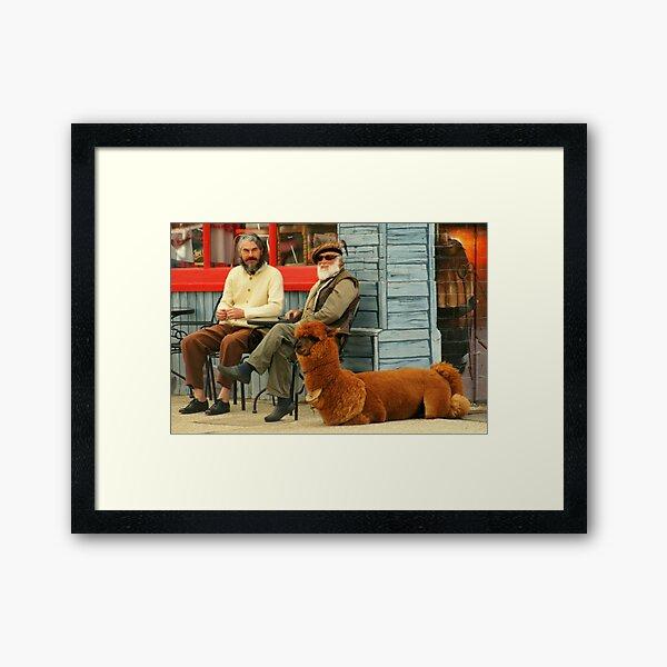 Lama Man Framed Art Print