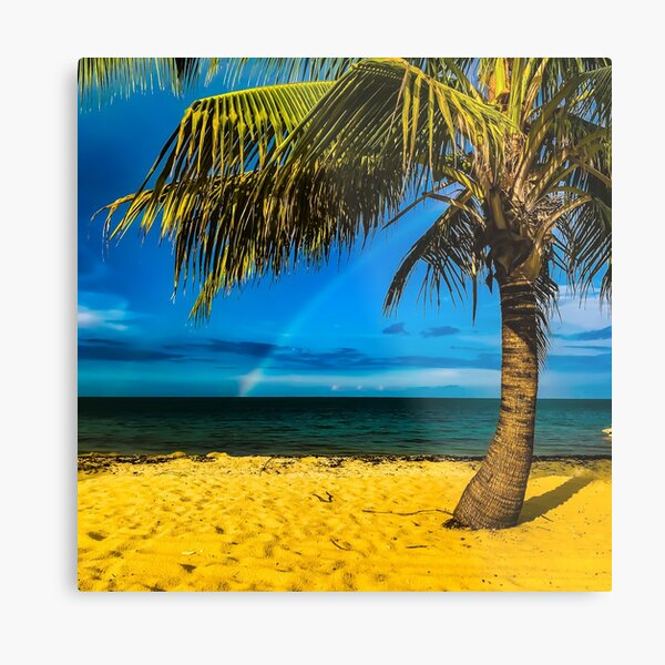 Rainbow and Palm Tree  Metal Print