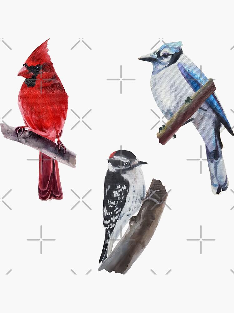 Wild Birds Sticker Set by EmilyBickell