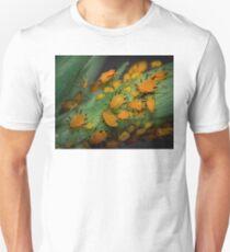 Aphids Illuminated T-Shirt