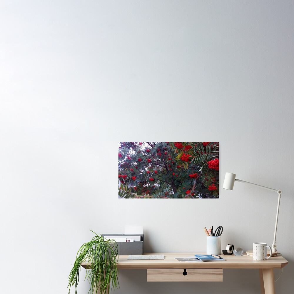 Flora and red fruits Poster