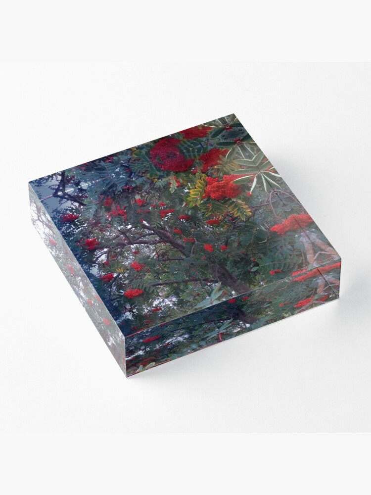 Alternate view of Flora and red fruits Acrylic Block