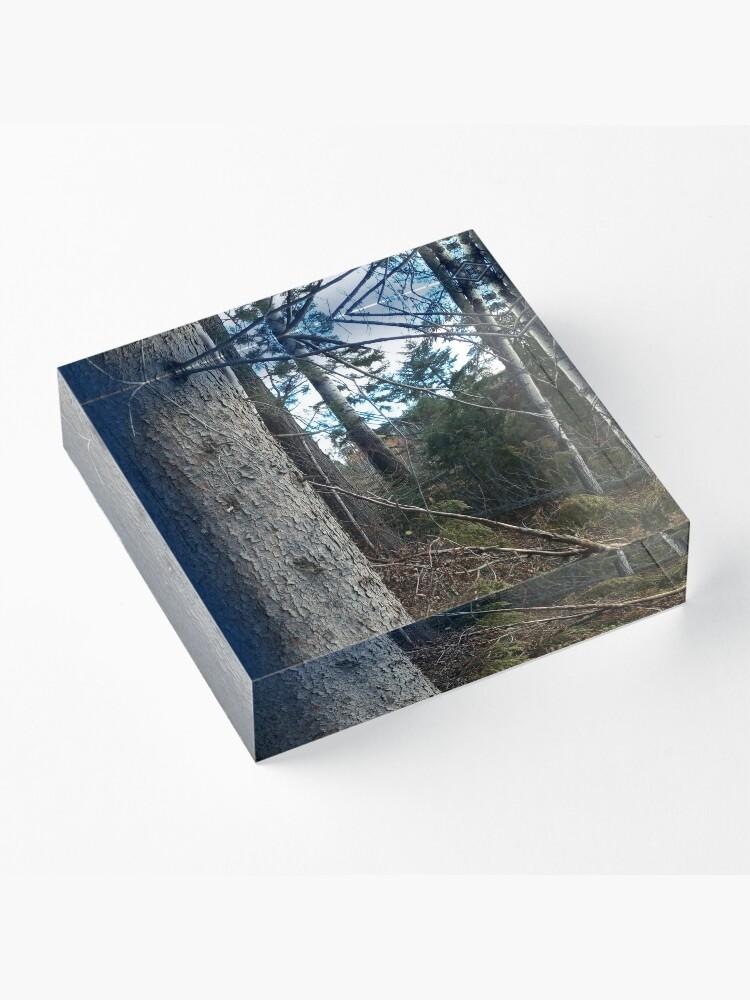 Alternate view of Canadian woodland 1 Acrylic Block