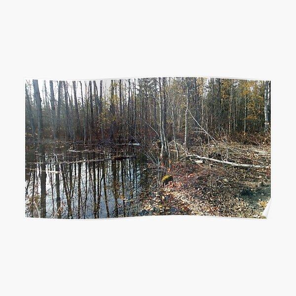 canadian swamp land 1 Poster
