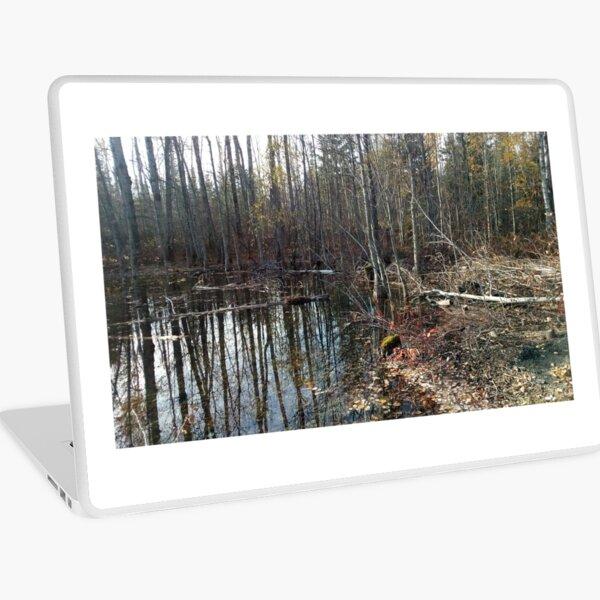 canadian swamp land 1 Laptop Skin