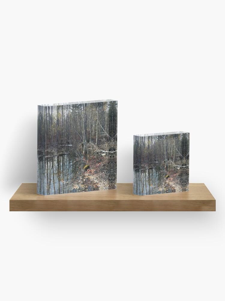 Alternate view of canadian swamp land 1 Acrylic Block