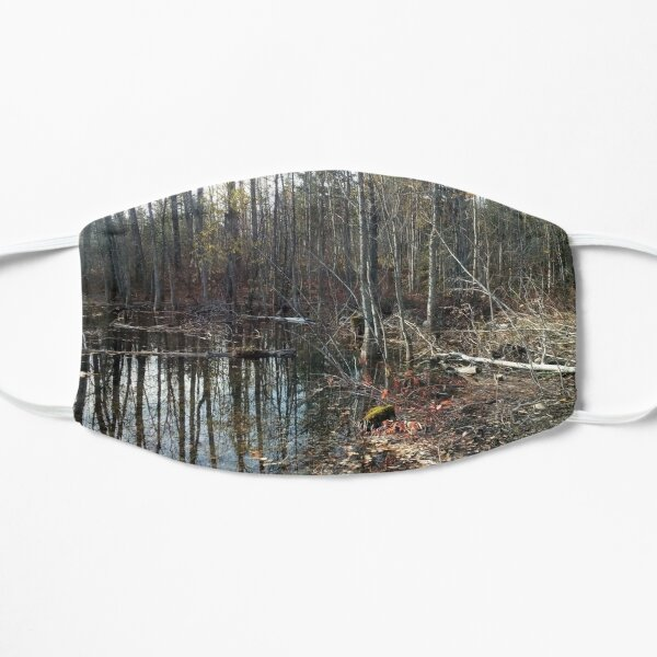 canadian swamp land 1 Mask