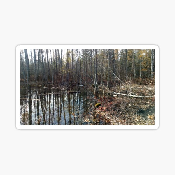 canadian swamp land 1 Sticker