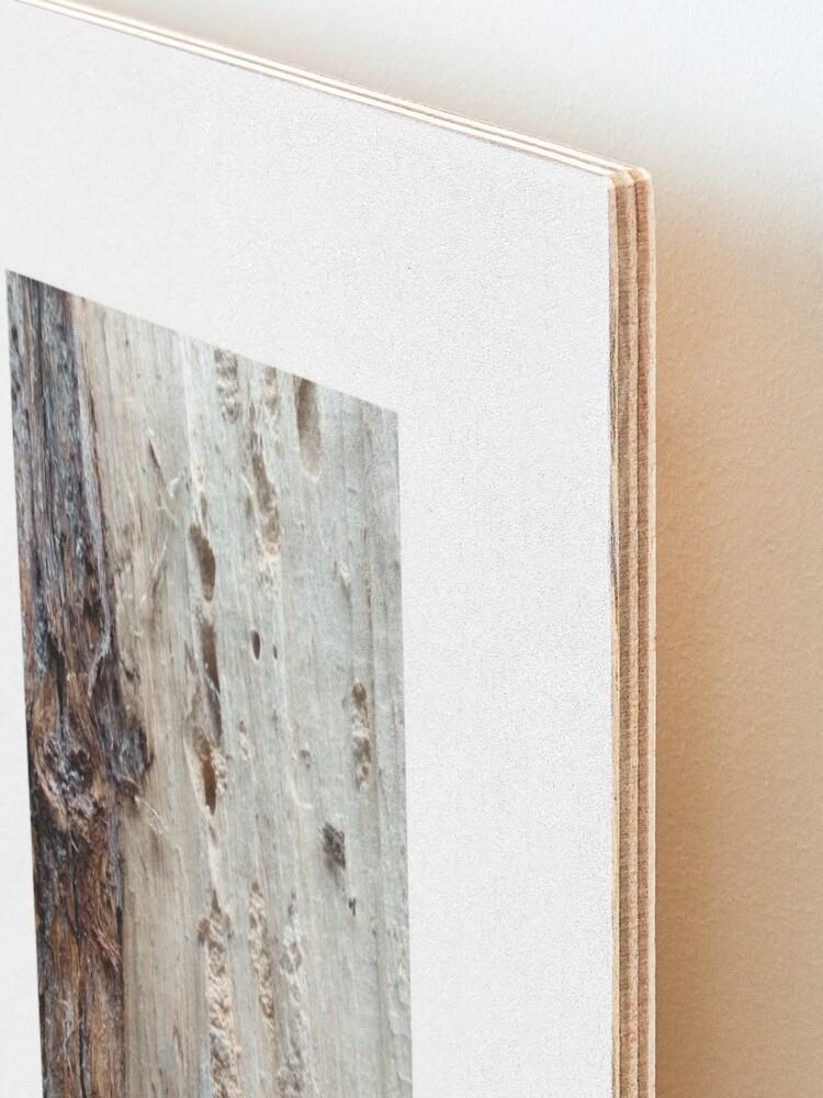 Alternate view of log upclose 2 Mounted Print
