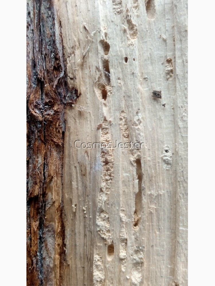log upclose 2 by CosmosJester