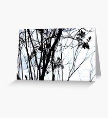 Lilac Snow  Greeting Card