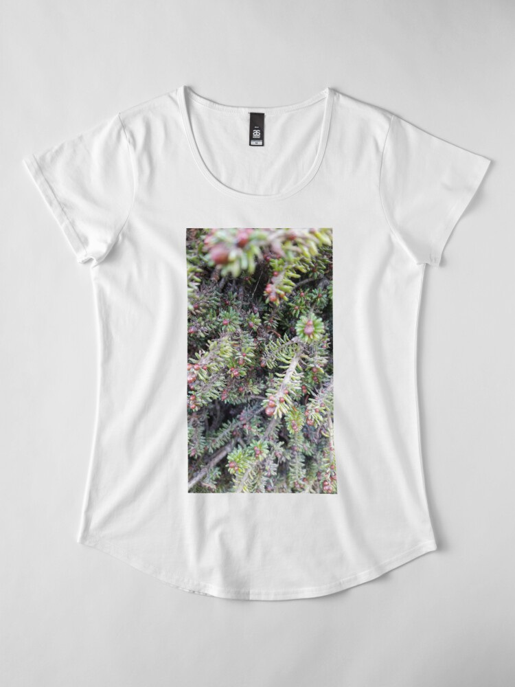 Alternate view of evergreen ever so close Premium Scoop T-Shirt