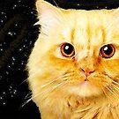 Ginger Cat Love von Natalie Cat