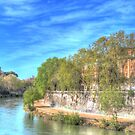 Sweep of the Tiber by vivsworld