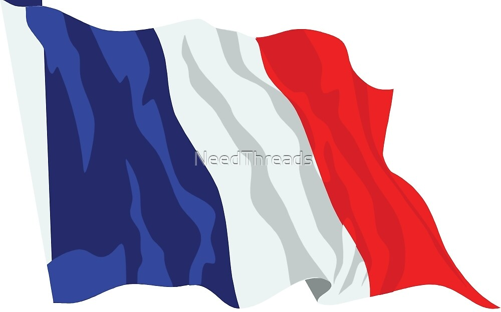 France Flag by NeedThreads