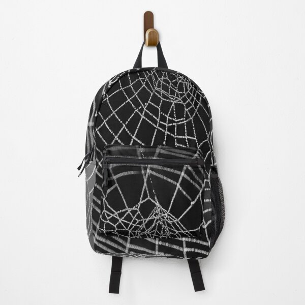 Nice Spider Backpack.  Backpack