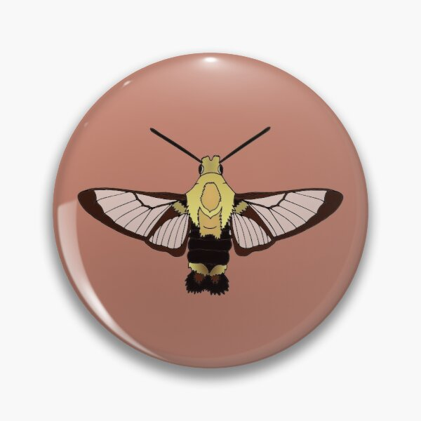 Snowberry Clearwing Pin