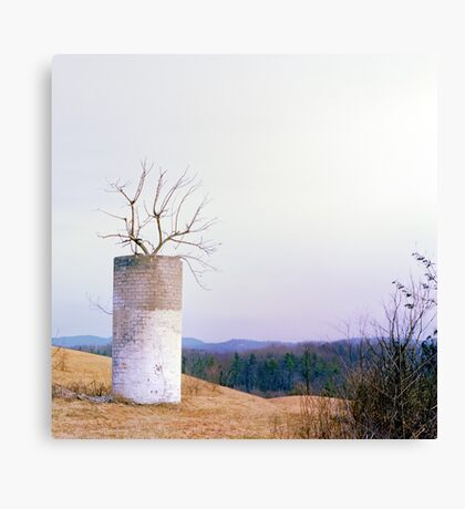 Tree in a Silo in January Canvas Print