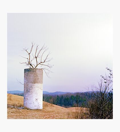 Tree in a Silo in January Photographic Print