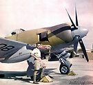 Bristol Centaurus Powered Hawker Tempest FB II in Pakistan 1948 by MarcW