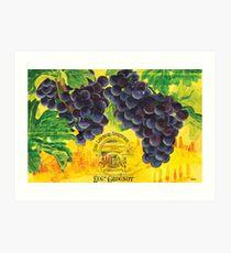 Vigne de Raisins Art Print