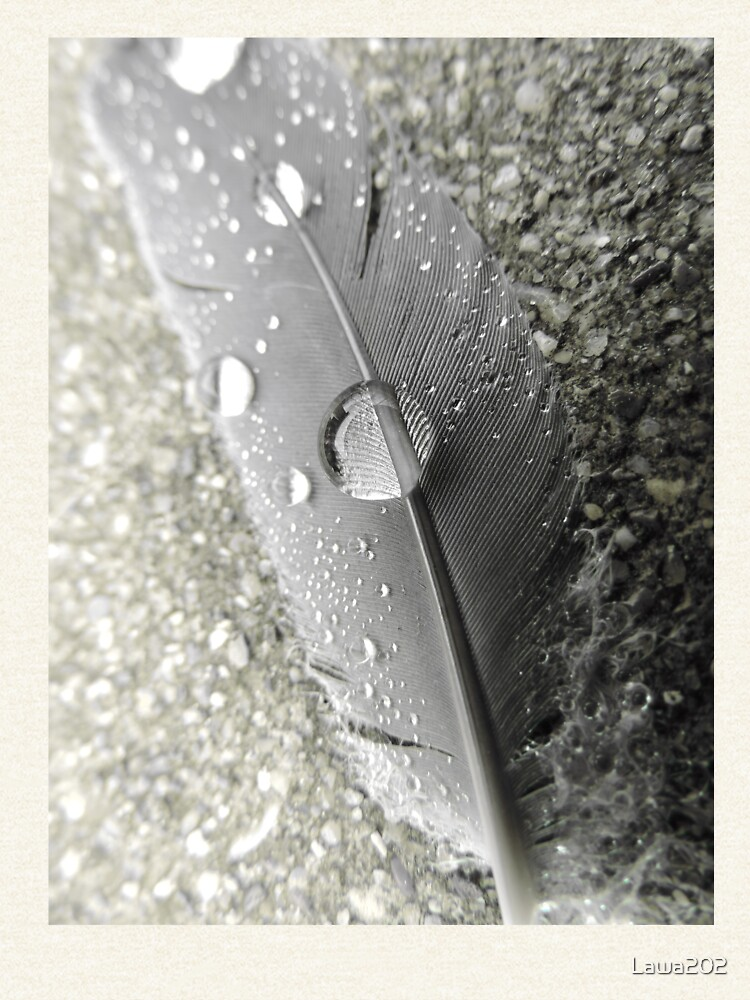 Feather with dew drops von Lawa202