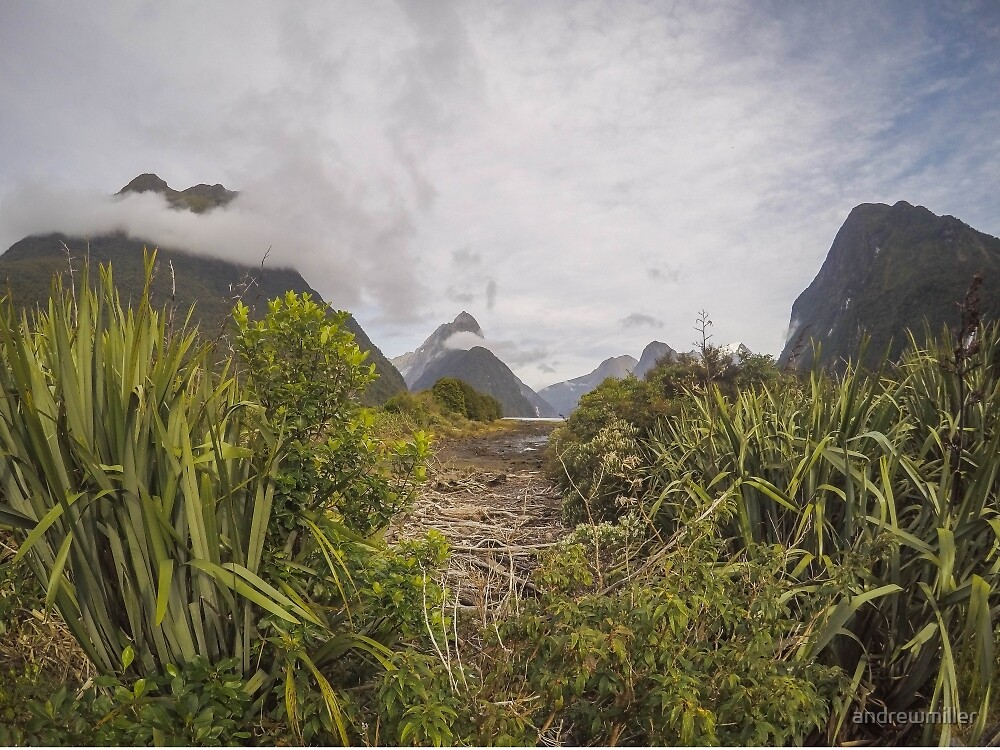 Milford Sound, New Zealand by andrewmiller